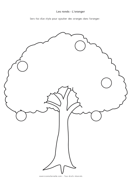 Tracer des ronds Maternelle Grande Section - les pommes